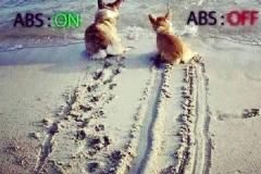 ABS включен и ABS выключен