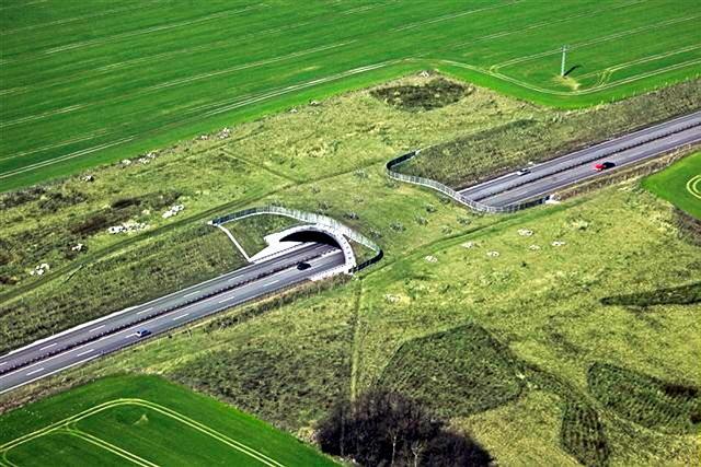 Зеленый мост для перехода автобана животными