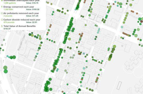 Интерактивная карта уличных деревьев в Нью-Йорке