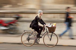 Ликбез по нормам для велодорожек в РФ