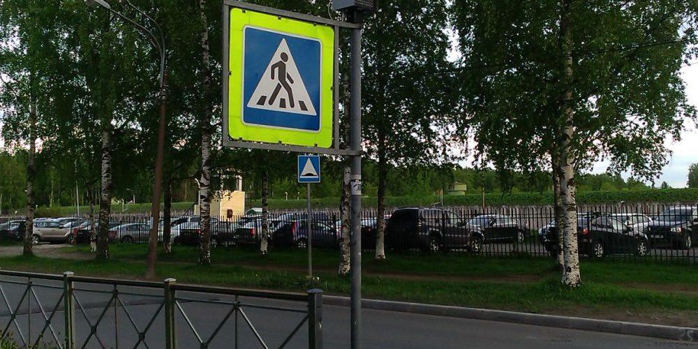Импульсные индикаторы на пешеходных переходах в Петербурге