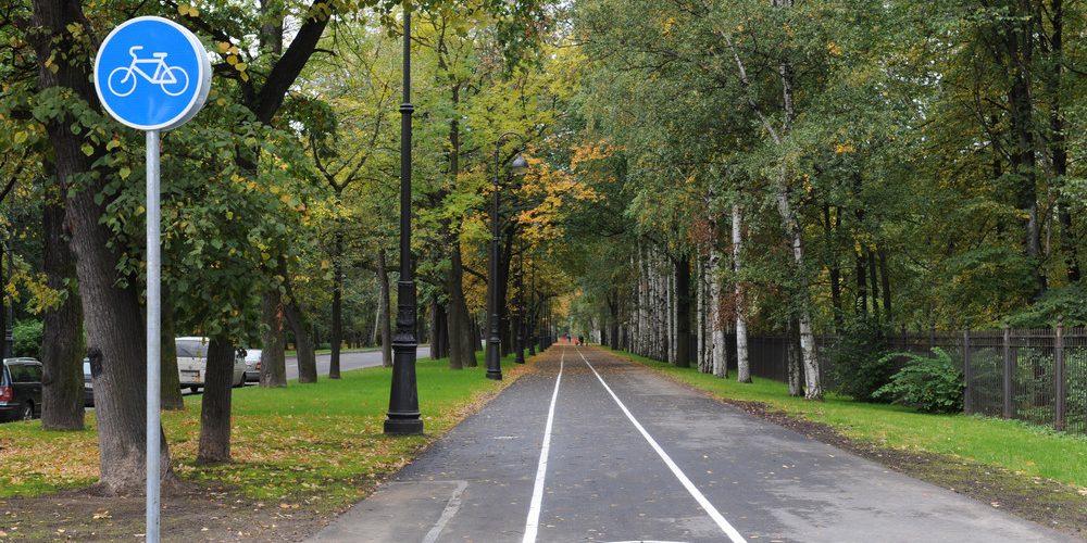 Велодорожкам в Петербурге быть